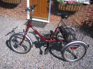 Pashley Picador with 250 Watt Mojo and lithium battery